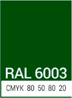 ral_6003