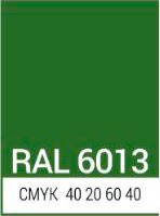 ral_6013